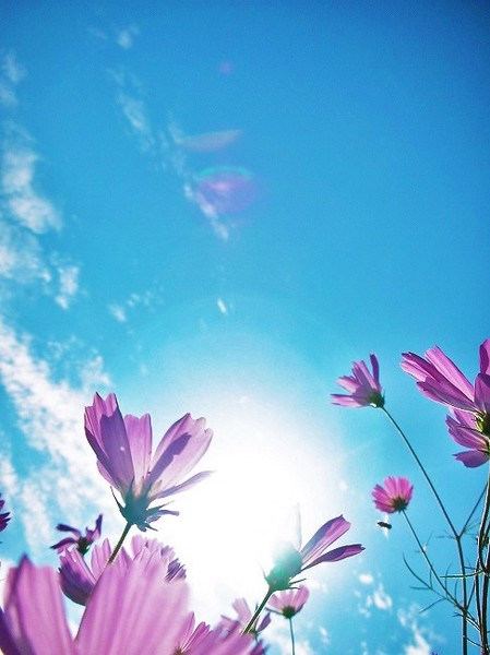 空の青さに沈む時(650.jpg